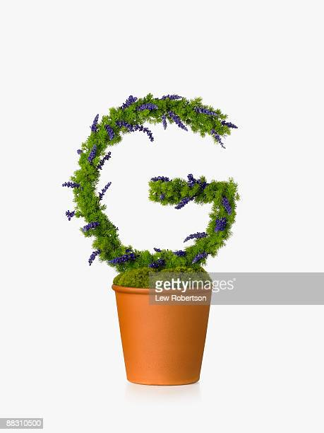 Potted plant as letter G