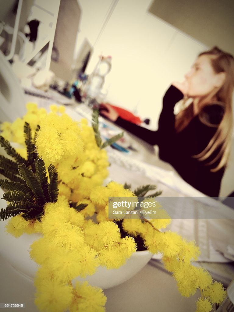 Potted Plant On Table With Woman Working At Office High