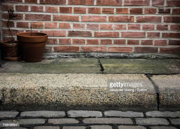 Potted Plants Against Brick Wall