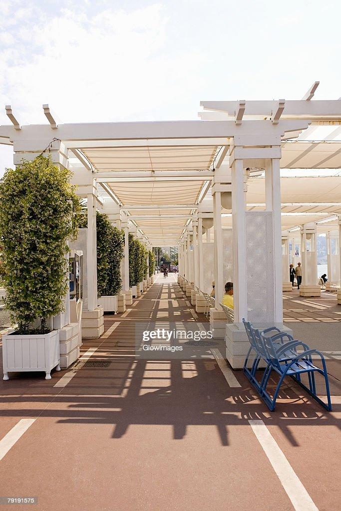Potted plants along a walkway, Nice, France : Foto de stock