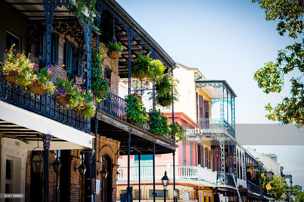 Potted Plants In Balcony Of Building At French Quarter : Stock Photo