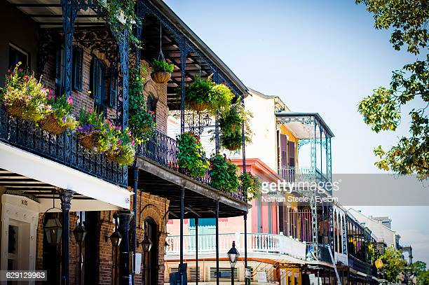 potted plants in balcony of building at french quarter - new orleans french quarter stock photos and pictures