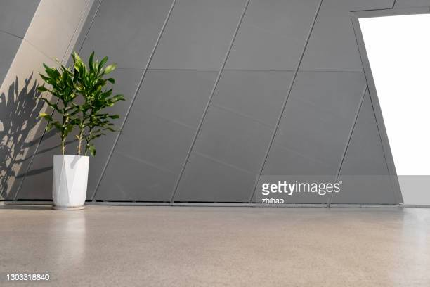 potted plants in front of wall of modern building - building entrance stock pictures, royalty-free photos & images