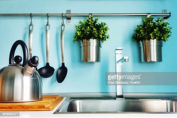 Potted Plants In Kitchen At Home
