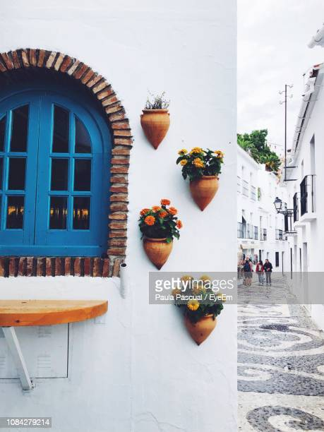 potted plants on building wall - andalucia fotografías e imágenes de stock