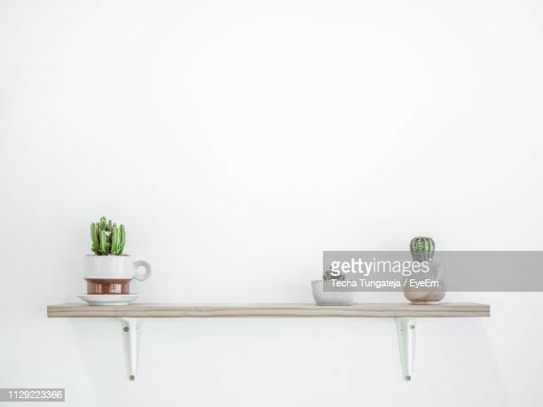 potted plants on shelf by wall - shelf stock pictures, royalty-free photos & images