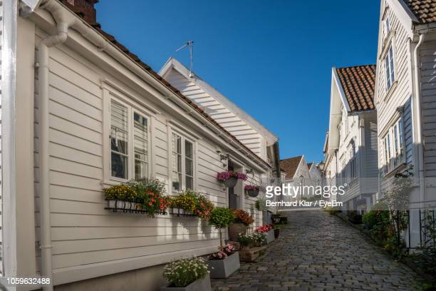 potted plants on street amidst buildings against blue sky - スタバンゲル ストックフォトと画像