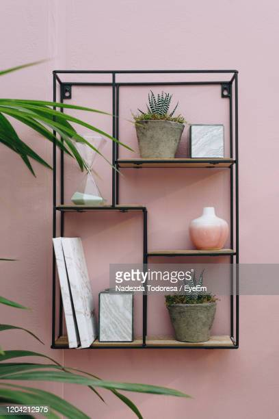 potted plants on wall - pink stock pictures, royalty-free photos & images