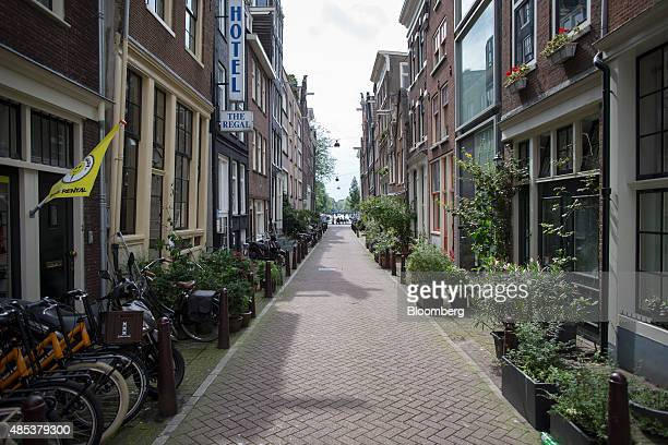 Potted plants sit in front of houses on a residential street in Amsterdam Netherlands on Wednesday Aug 26 2015 Seven years after a global financial...