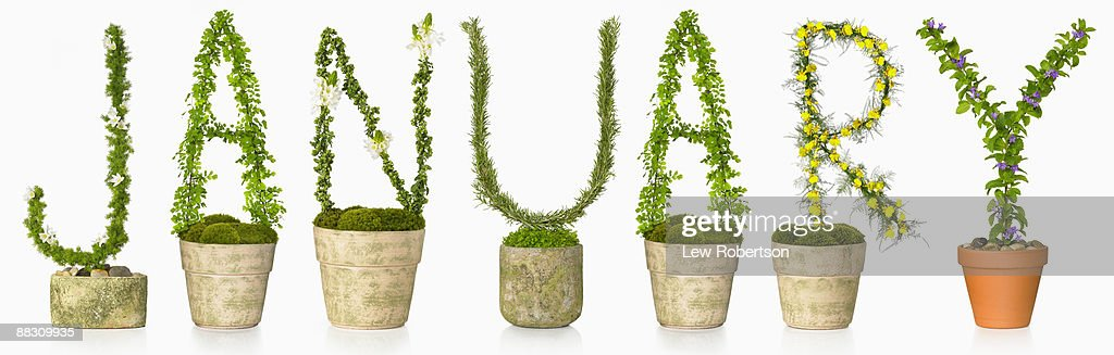 Potted plants spelling January : Stock Photo