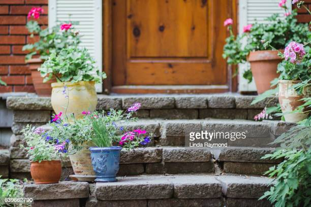 potted plants with flowers on the steps of a house porch - potted plant stock pictures, royalty-free photos & images