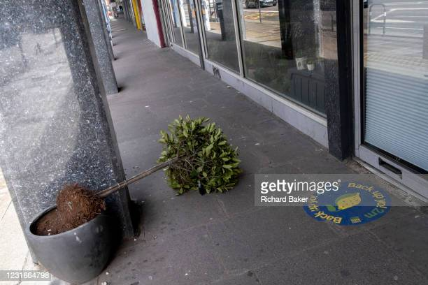 Potted shrub lies across the pavement after windy weather during the third lockdown of the Coronavirus pandemic, on 11th March 2021, in London,...