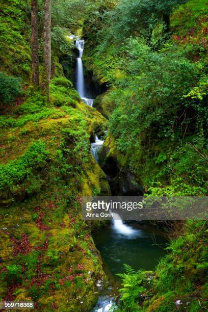 Poulanass Waterfall in Wicklow Mountains National Park by Glendalough, southeastern Ireland