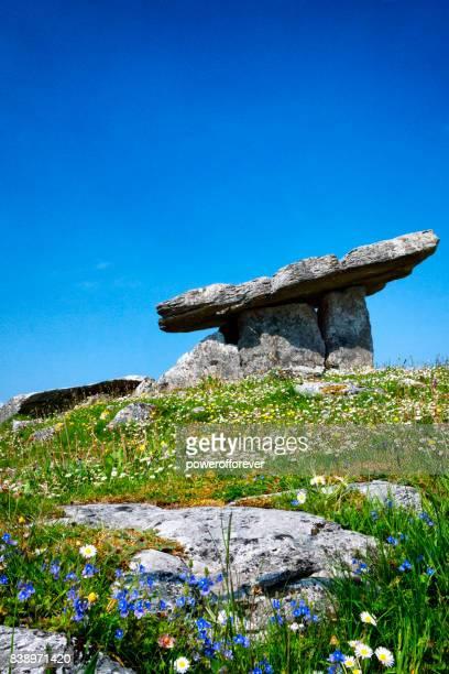 poulnabrone dolmen portal tombe in de burren in county clare, ierland. - limestone pavement stockfoto's en -beelden