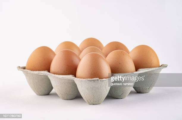 poultry eggs in cardboard tray - brown stock pictures, royalty-free photos & images