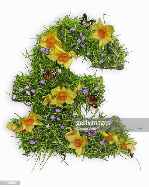 Pound symbol with flowers and grass