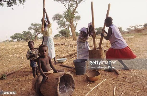 Pounding Maize Burkina Faso Silmiougou Village Women And Children
