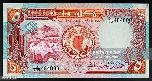 Pounds banknote, 1990-1999, obverse depicting cattle and a hut. Sudan, 20th century.