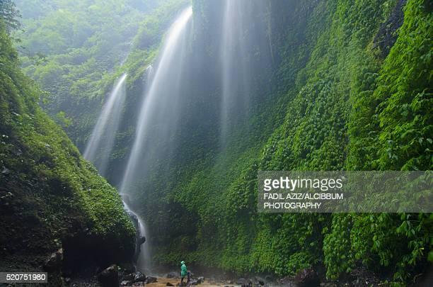 Pouring water of hidden Madakaripura waterfall, forming a water curtain