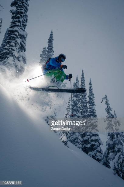 powder skiing - alpine skiing stock pictures, royalty-free photos & images
