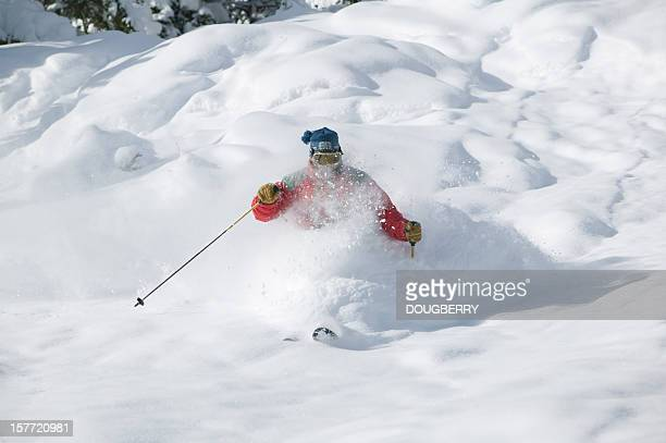 powder skiing - one animal stock pictures, royalty-free photos & images