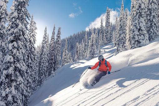Powder skiing 623108528