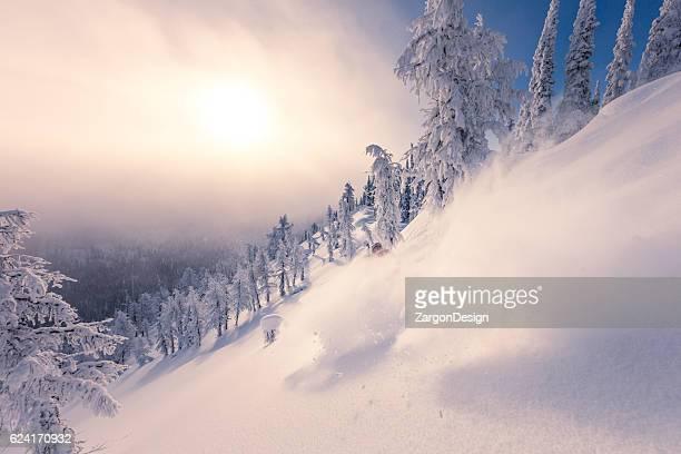 Pratique du ski dans la poudreuse