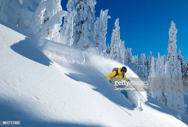 powder skiing - powder snow stock pictures, royalty-free photos & images