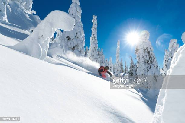powder skiing - back country skiing stock pictures, royalty-free photos & images