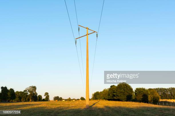 Power line in field at dusk