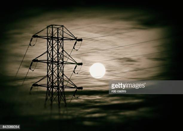 power line - rob castro stock pictures, royalty-free photos & images