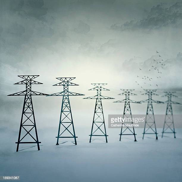 power lines - catherine macbride stock pictures, royalty-free photos & images