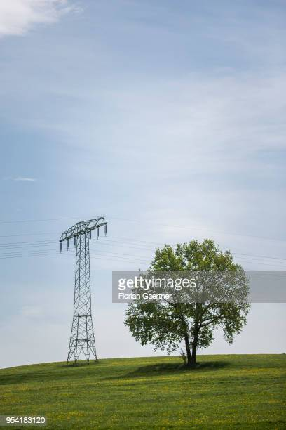 A power pole is located next to a tree on a hill on April 30 2018 in Holtendorf Germany