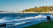 view elliott bay with alki beach