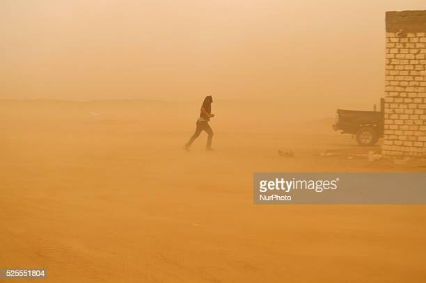 A powerful sand storm sweeping the western desert an marks the begining of Winter at alBuhayerah Egypt on 6 October 2015 A man running through the...