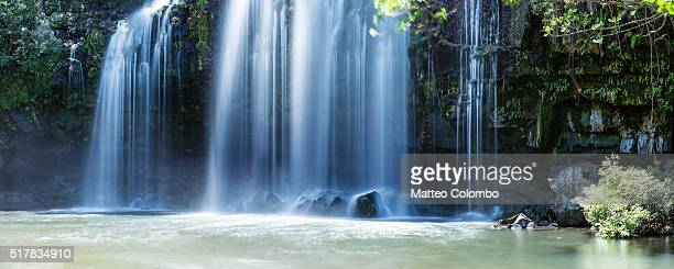 powerful waterfall in the green forest of costa rica - guanacaste stock pictures, royalty-free photos & images