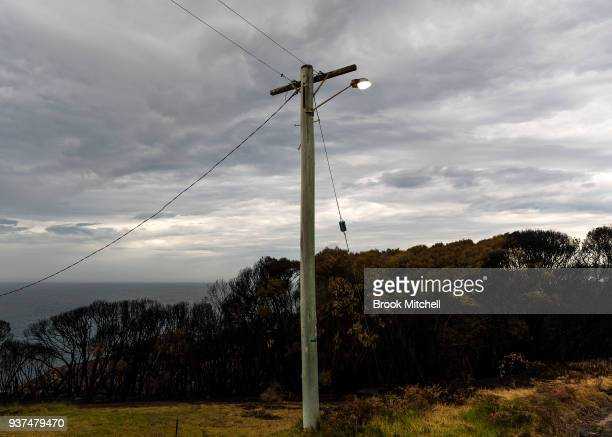 Powerlines and burnt bushland are pictured in Tathra on March 25 2018 in Tathra Australia A bushfire which started on 18 March destroyed 65 houses 35...
