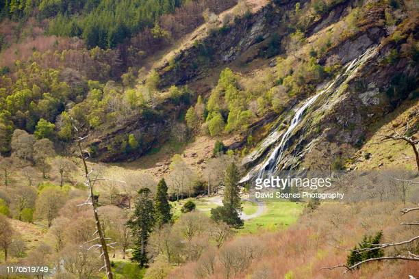 powerscourt waterfall, co. wicklow - david soanes stock pictures, royalty-free photos & images