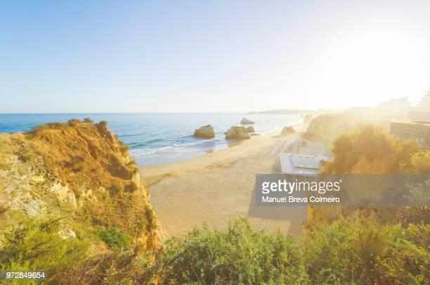 praia da rocha, algarve, portugal - albufeira stock photos and pictures