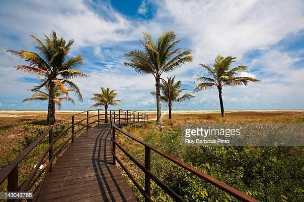 praia de atalaia - brasil sergipe aracaju - fotografias e filmes do acervo