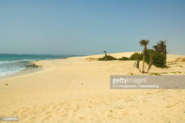 praia de chaves (chaves beach), boa vista, cape verde islands, atlantic, africa - cabo verde fotografías e imágenes de stock