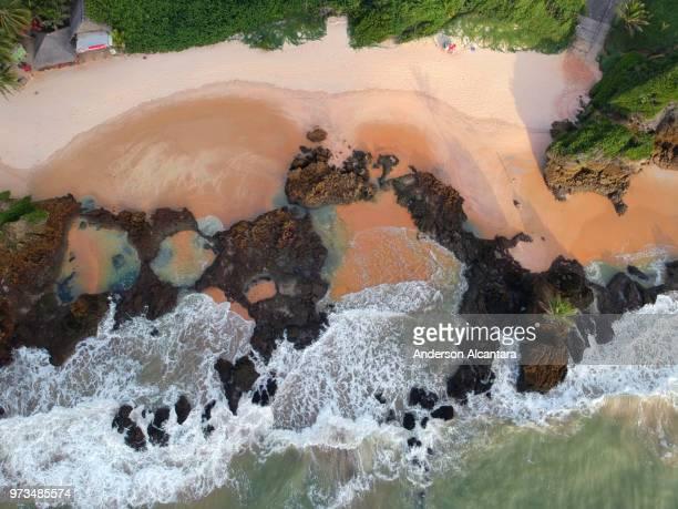 praia de tambaba - nudismo - nudismo stock pictures, royalty-free photos & images