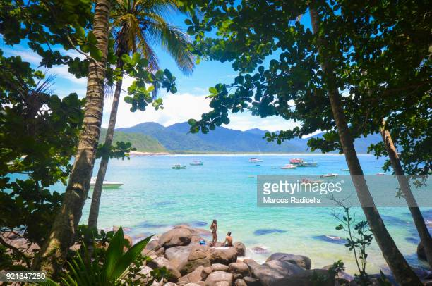 praia do aventureiro, ilha grande, brazil - radicella stock photos and pictures