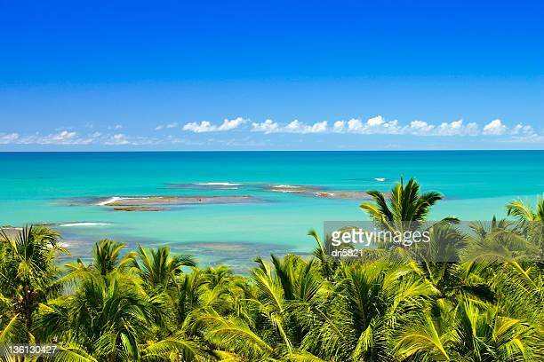 praia do espelho - espelho stock pictures, royalty-free photos & images
