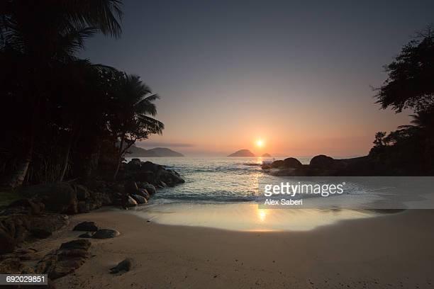 praia do felix beach in the atlantic rainforest at sunrise, ubatuba, brazil. - alex saberi photos et images de collection