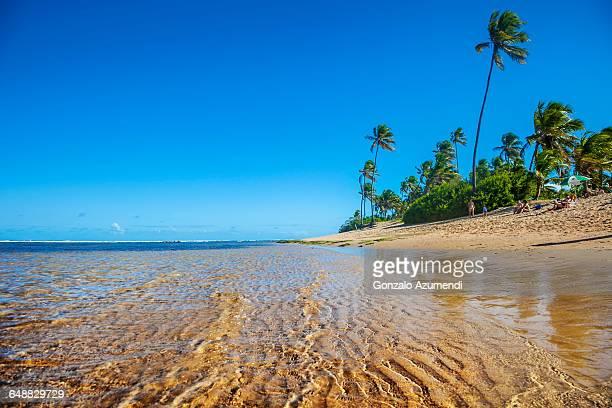 Praia do Forte in Bahia