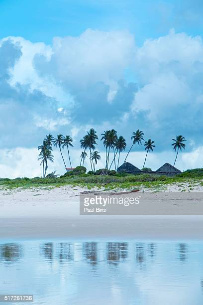 Praia do Frances, Frances Beach, Maceio, Brazil