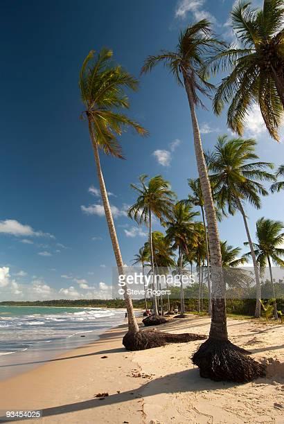 Praias dos Coqueiros - Trancoso