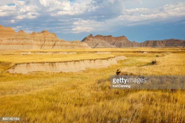 Prairie and Badlands at Badlands National Park