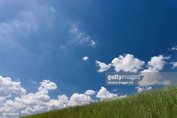 Prairie and summer sky